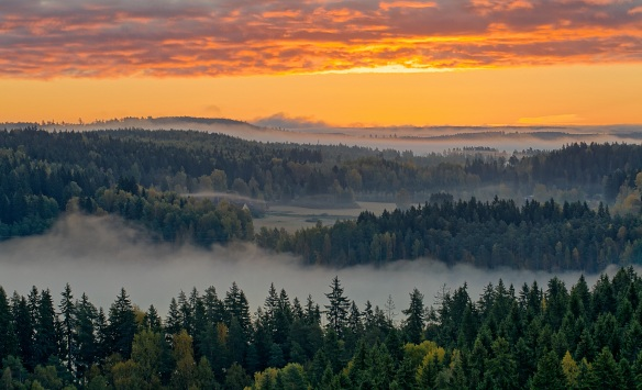 Dramatic landscape of Aulanko nature reserve park in Finland. Thick fog covering the land in the early morning silence. HDR image.